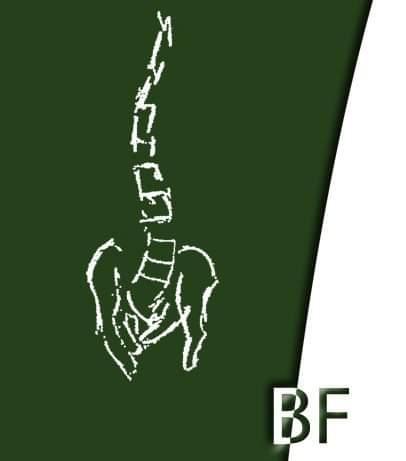 Fisioterapia Respiratoria Bilbao - BF